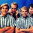 I Beach Boys, gli incredibili ragazzi del surf - Parte I